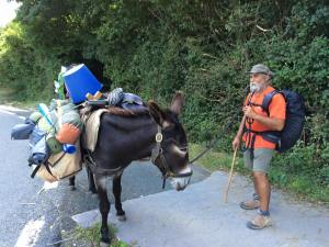 "Thanks to my French teachers (Ms. Calenti and Mrs. Gold) I didn't just watch this guy go by. I got his story. He and his donkey (Le Roi--""The King"") left their home in France on June 29. They got to Santiago and then TURNED AROUND and were headed home when Lois and I met them on Sept 6, 2015."