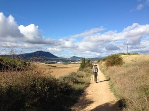 On the Camino between Lorca and Estella, Spain.
